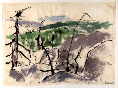 Fotograf: Eget fotoVærk  titel: Skovdøden - Polen Værk  type: Akvarel Materiale: Akvarel + tusch Størrelse: 26x20 cm Færdiggjort: 1993